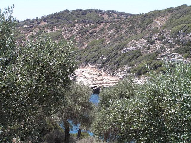 sirines bungalows astris thassos accommodation nikana gr