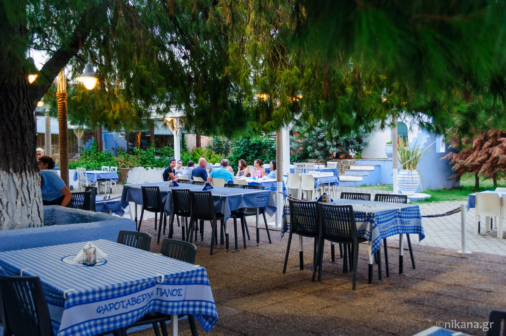 the best restaurants and dishes on sithonia  (18)