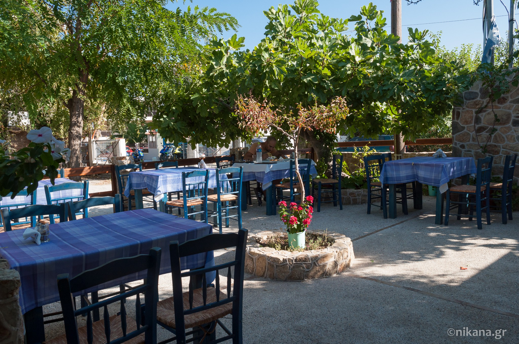 the best restaurants and dishes on sithonia  (39)