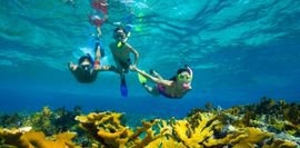 Beaches for diving and snorkeling 1