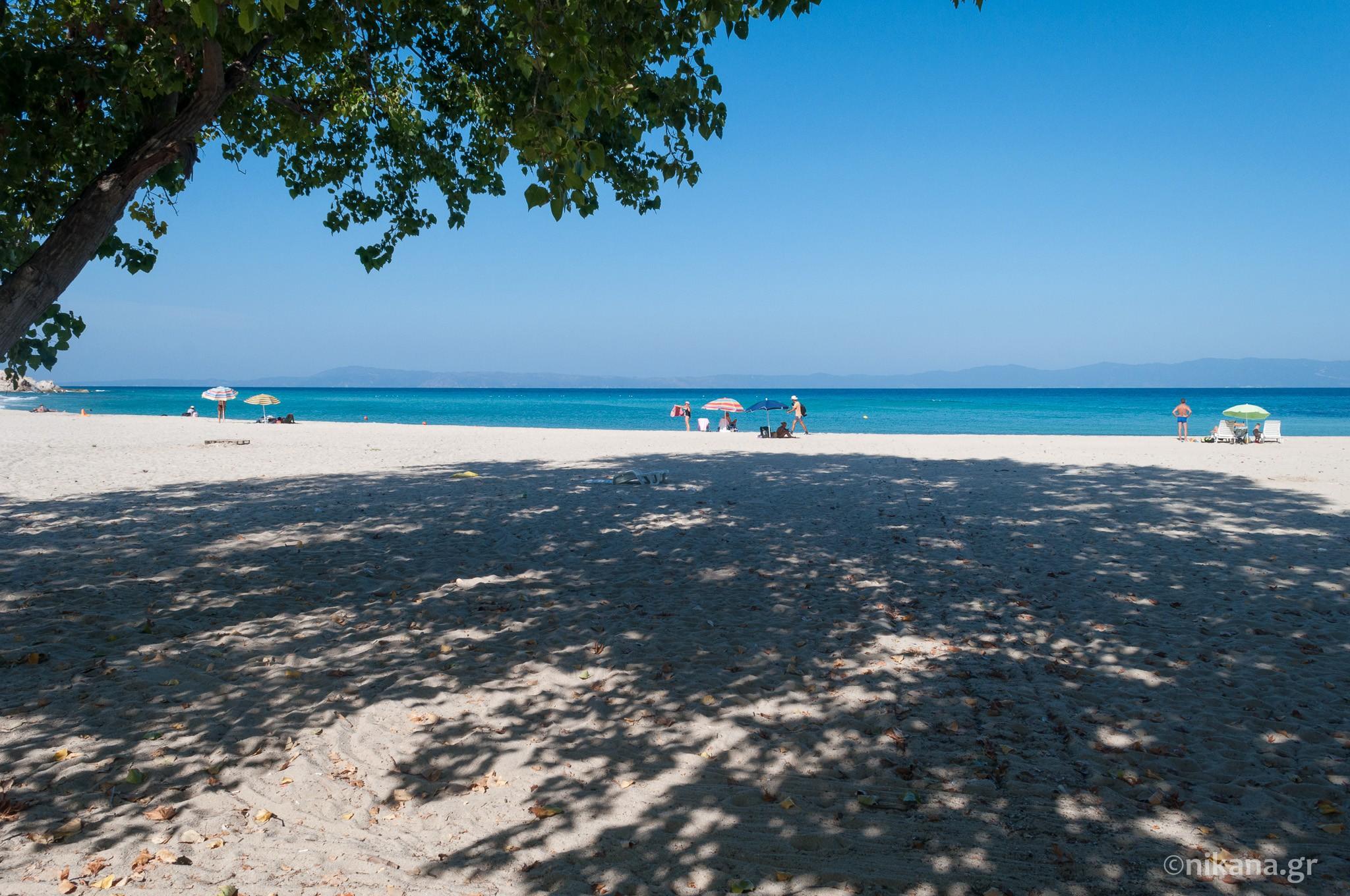 Platanitsi beach - Sithonia tourist guide - Nikana.gr
