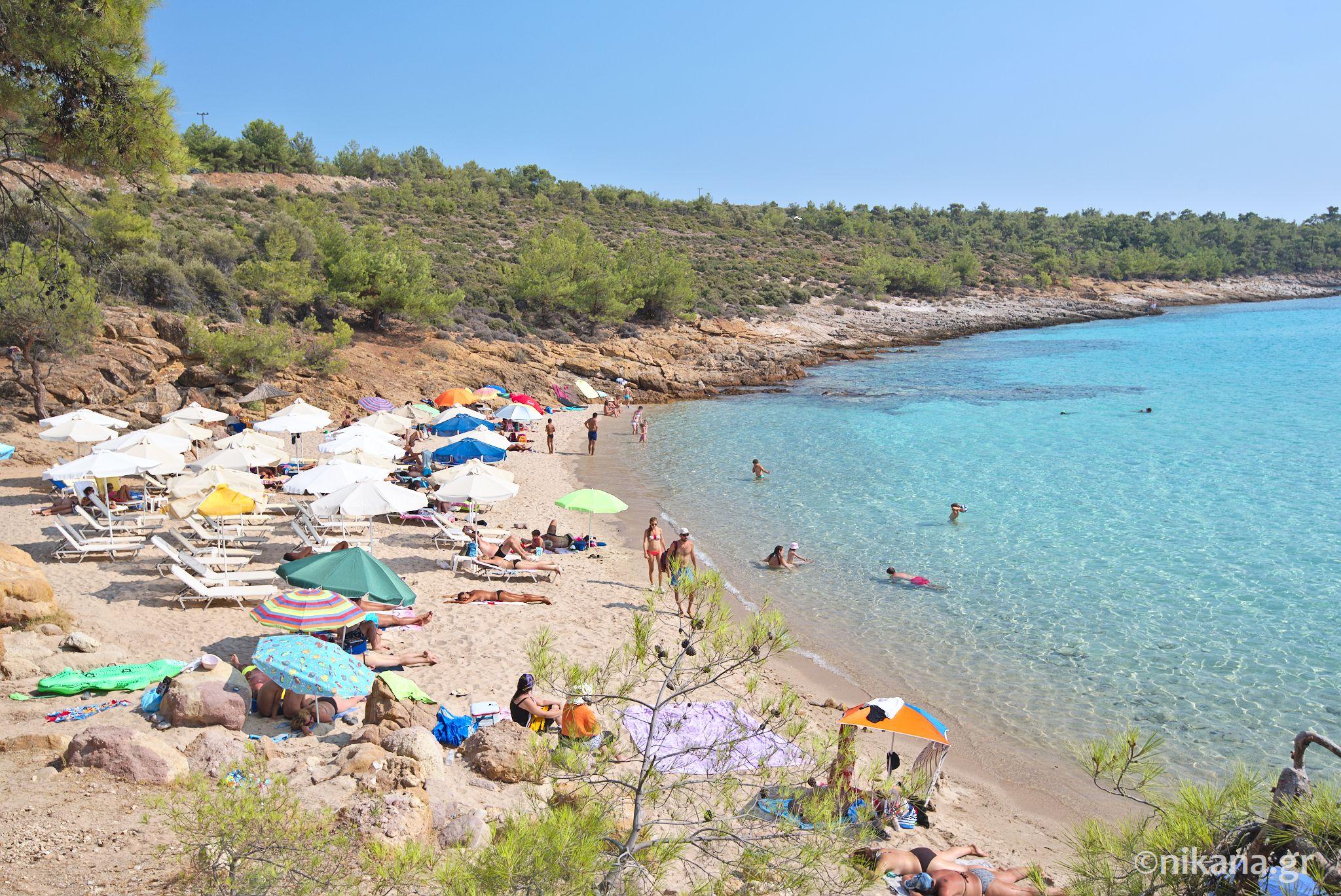 Notos Beach Tasos Euro