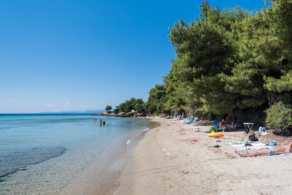 elia beach sithonia 10