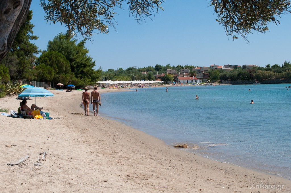 elia beach sithonia 3