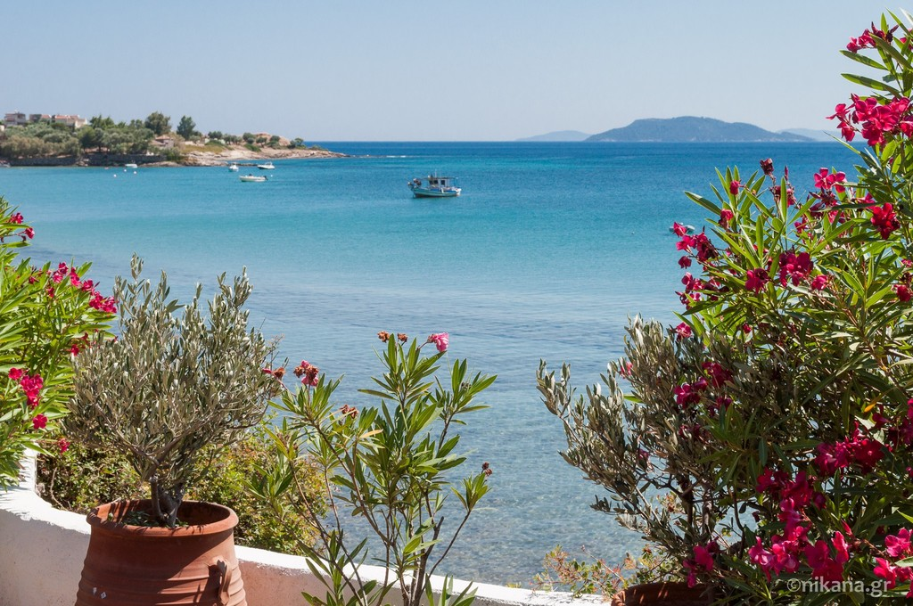 elia beach sithonia 5