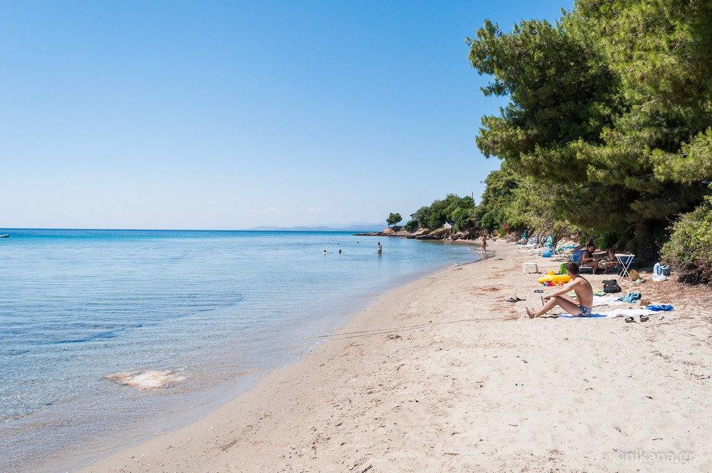 elia beach sithonia 9