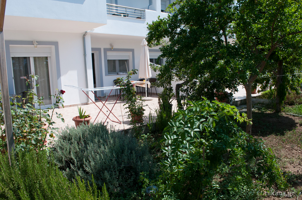 galini apartments front astris thassos  (3)