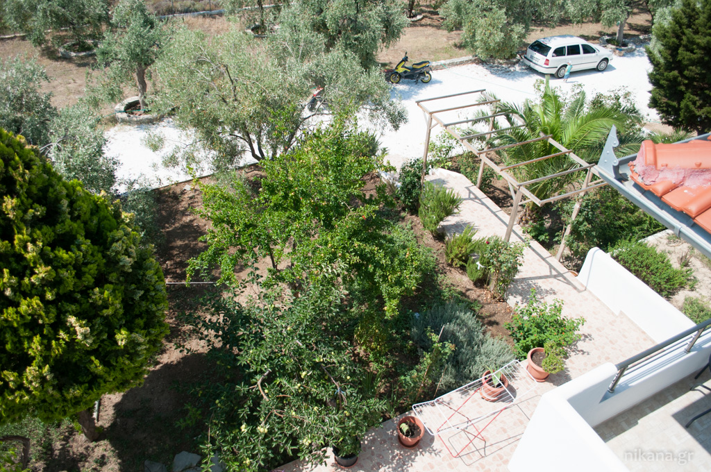 galini apartments outside astris thassos  (2)