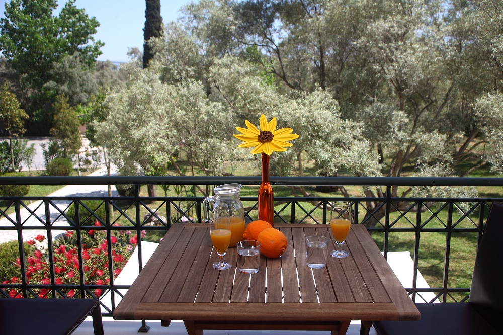 anthias garden apartments lefkas lefkada 5
