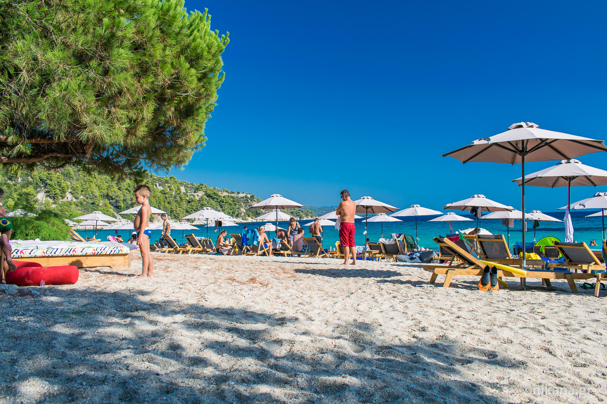 Beaches with natural shade in Sithonia Sithonia tourist guide