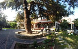 alterra vita bed and breakfast paradisos neos marmaras sithonia 1