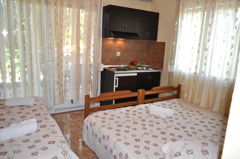 plaisir studio limenaria thassos 4 bed studio 5
