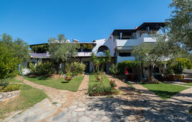 olive house elia  beach sithonia (1)